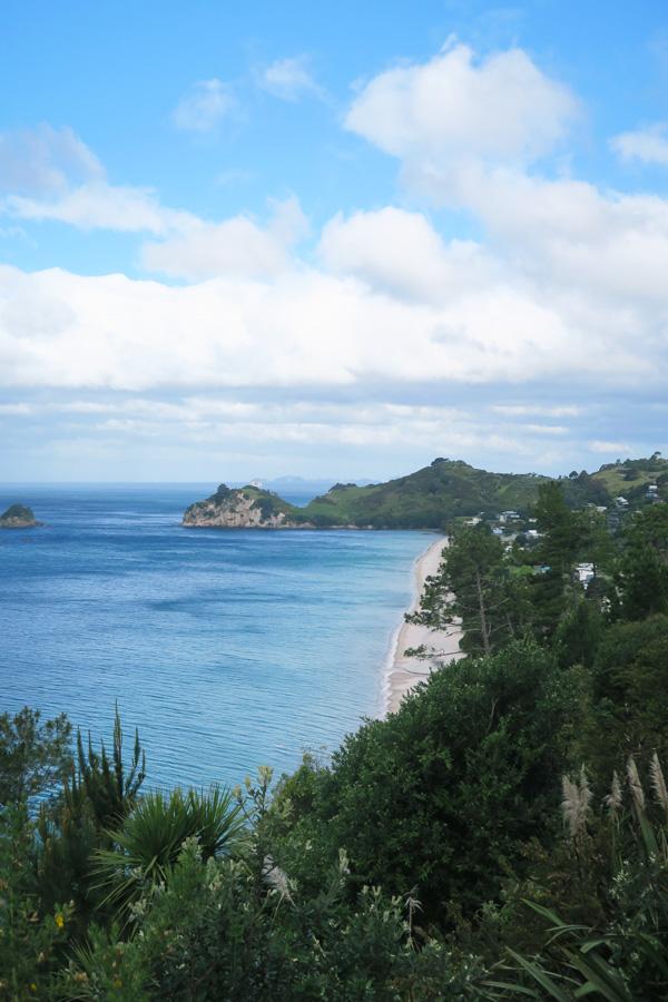 hahei beach in coromandel in new zealand
