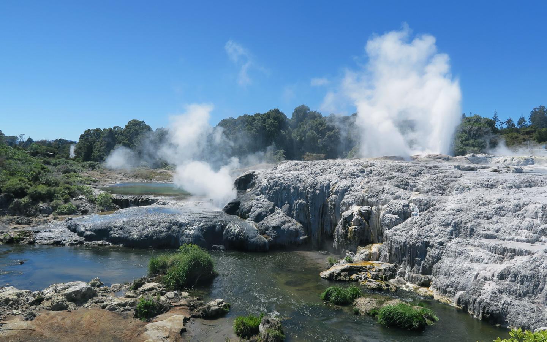 geyser steam in tepuia in rotorua in new zealand