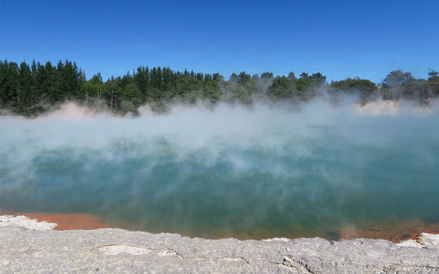 steam coming off blue and orange lake in geothermal area in new zealand