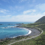 cape palliser in new zealand coastline where the sea meets the road