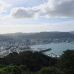 views of wellington bay in new zealand