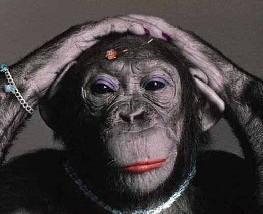 gorilla in lipstick branding analogy