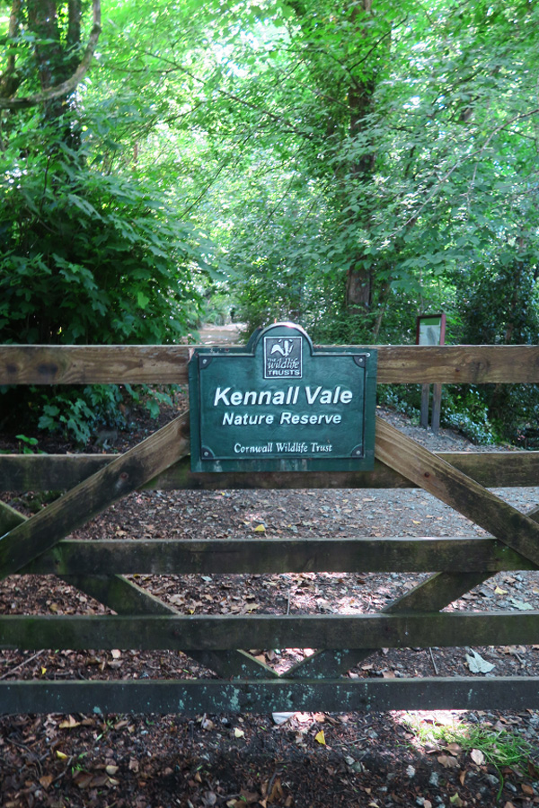kennall vale nature reserve owned by the cornwall wildlife trust entrance