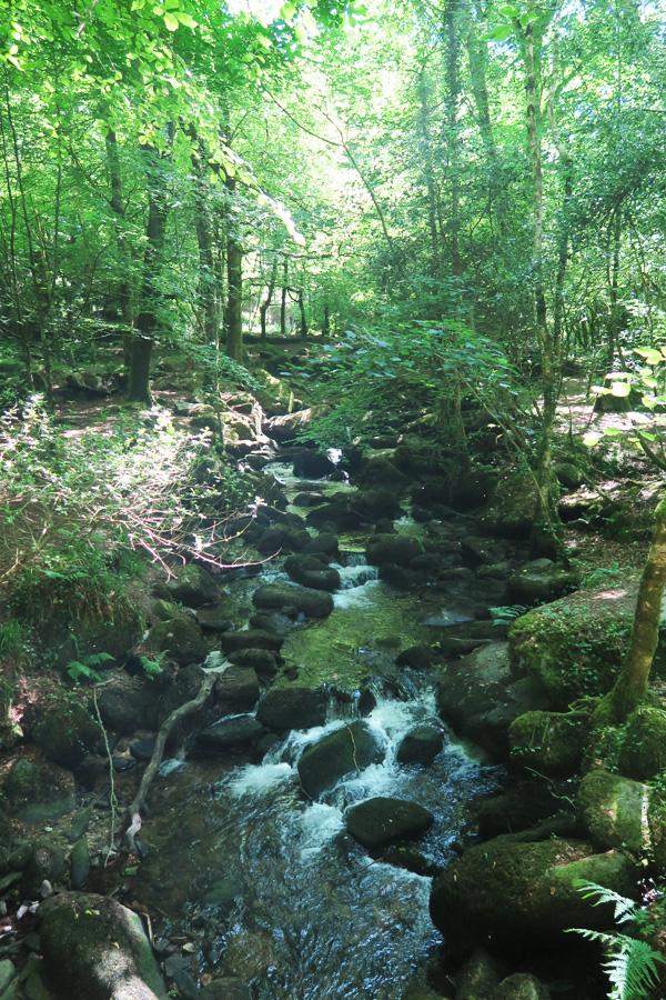 kennall river in cornwall