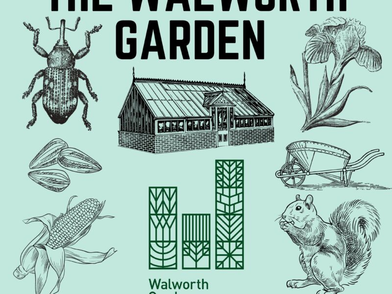 See what is new at Walworth Garden this September