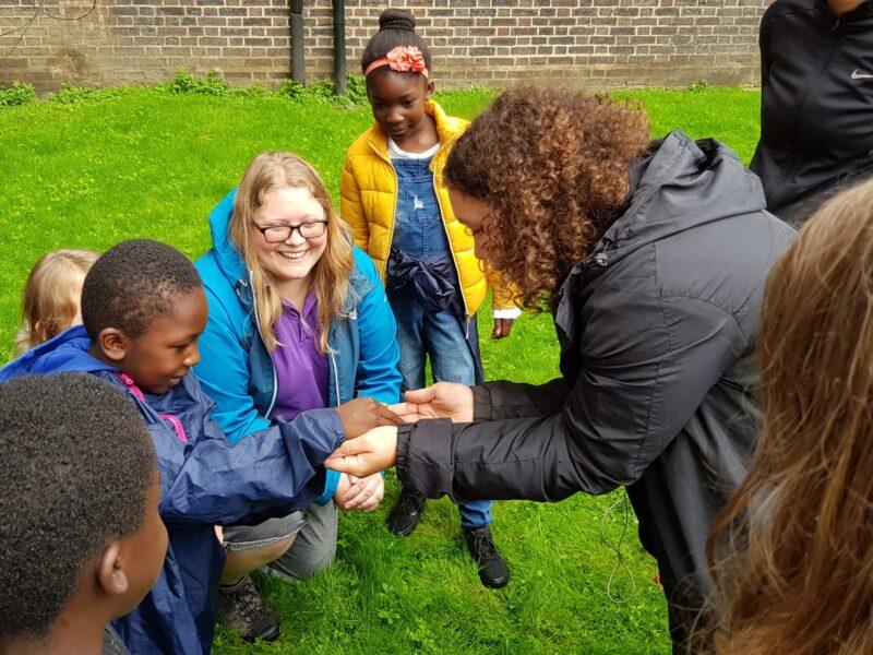Rockingham Allotment: Froglife Event