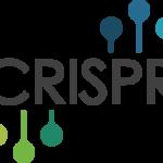 Gene editing technique CRISPR