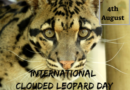International Clouded Leopard Day 4th of August 2020