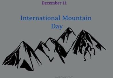 International Mountain Day 11 December 2020 Theme