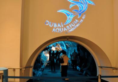 10 Best Kids Activities in Dubai
