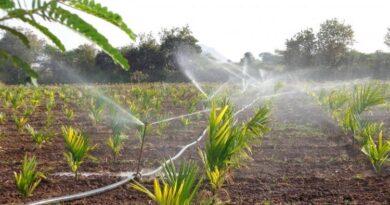 Major Advantages of Installing an Irrigation System