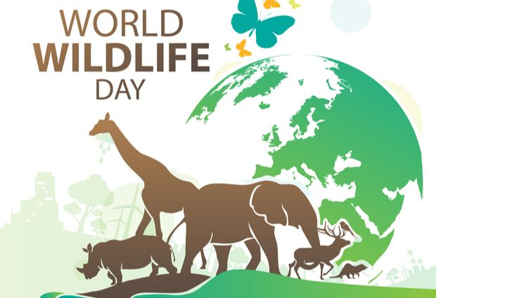 World Wildlife Day 2021:Theme, Challenges and Facts