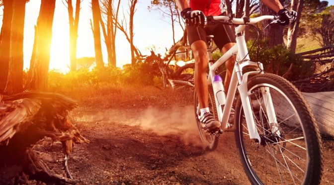 Mountain Bike Reviews News and Events