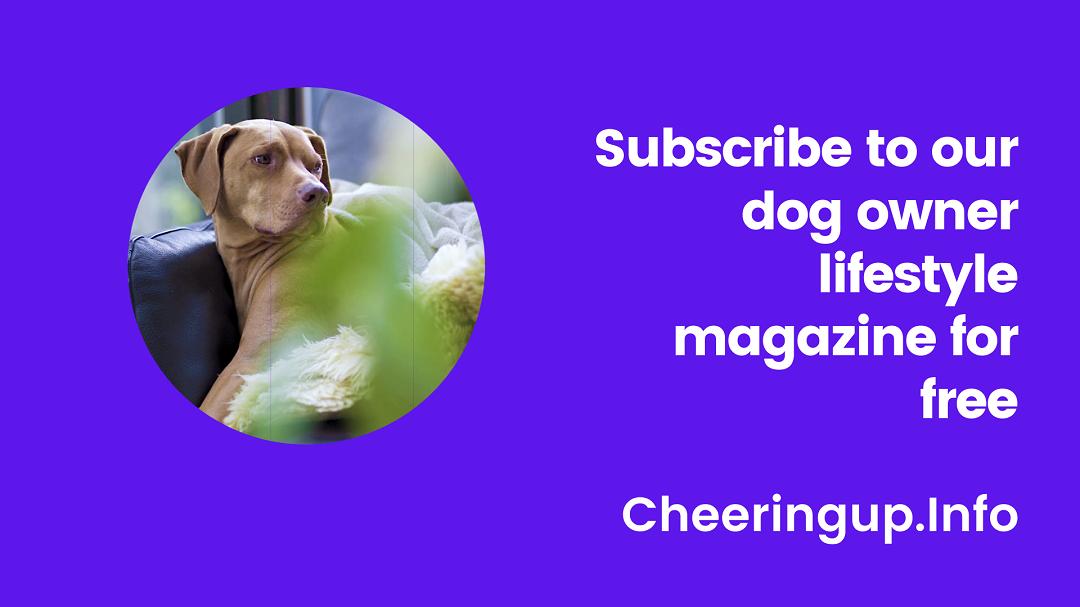 Free Dog Lovers Magazine UK