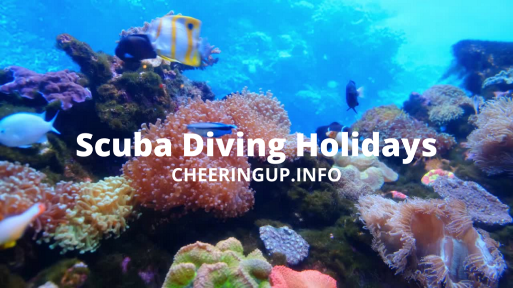 Best Scuba Diving Holidays On CheeringupInfo