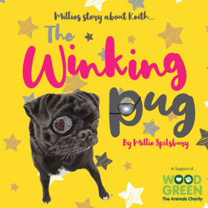 The Winking Pug Book by Millie Spilsbury