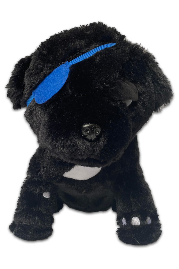 The Winking Pug Toy