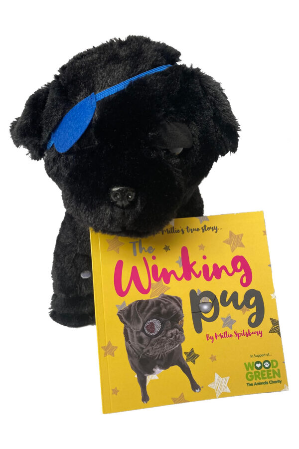 The Winking Pug Toy and Book