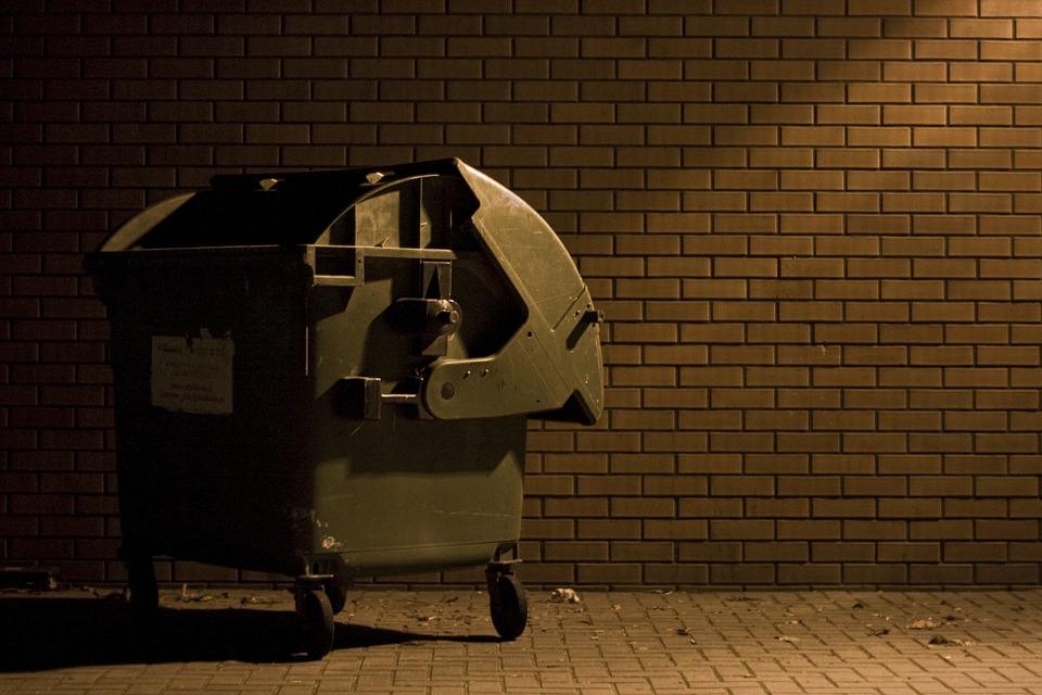 Crni medved nije mogao da otvori kontejner, pa odlučio da ga ponese ( Video )