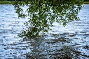 Vanredna situacija zbog opasnosti od poplava na teritoriji Žitorađe, Doljevca i Prokuplja