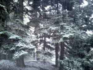 Sneg i tokom noći