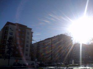 Dobro jutro Beograde! Beli bizon u belom gradu,Beogradu