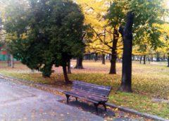 Dobro jutro Beograde! Savet za Beograđane