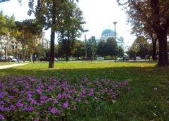 Dobro jutro Beograde! Deca vide sreću i radost u svemu,a odrasli samo na bankovnom računu