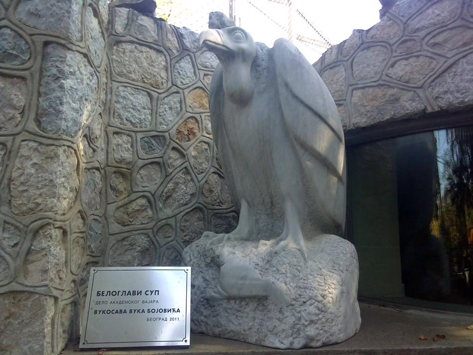"Skulptura ""Beloglavi sup"" – Vuk Bojović"