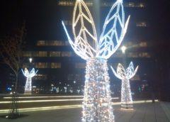 Beogradska zima 2020: Sutra se uključuje novogodišnja rasveta, a danas…