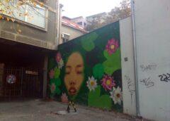 Beogradski grafit: Savamala