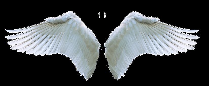 Ona je novi Viktorijin anđeo