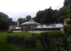 Staklena bašta u Beogradu