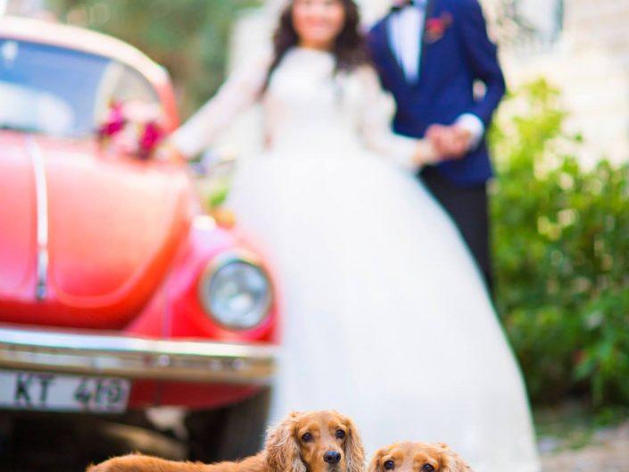 Ayvalık Cunda Düğün Fotoğrafları • Ebru ve Emre