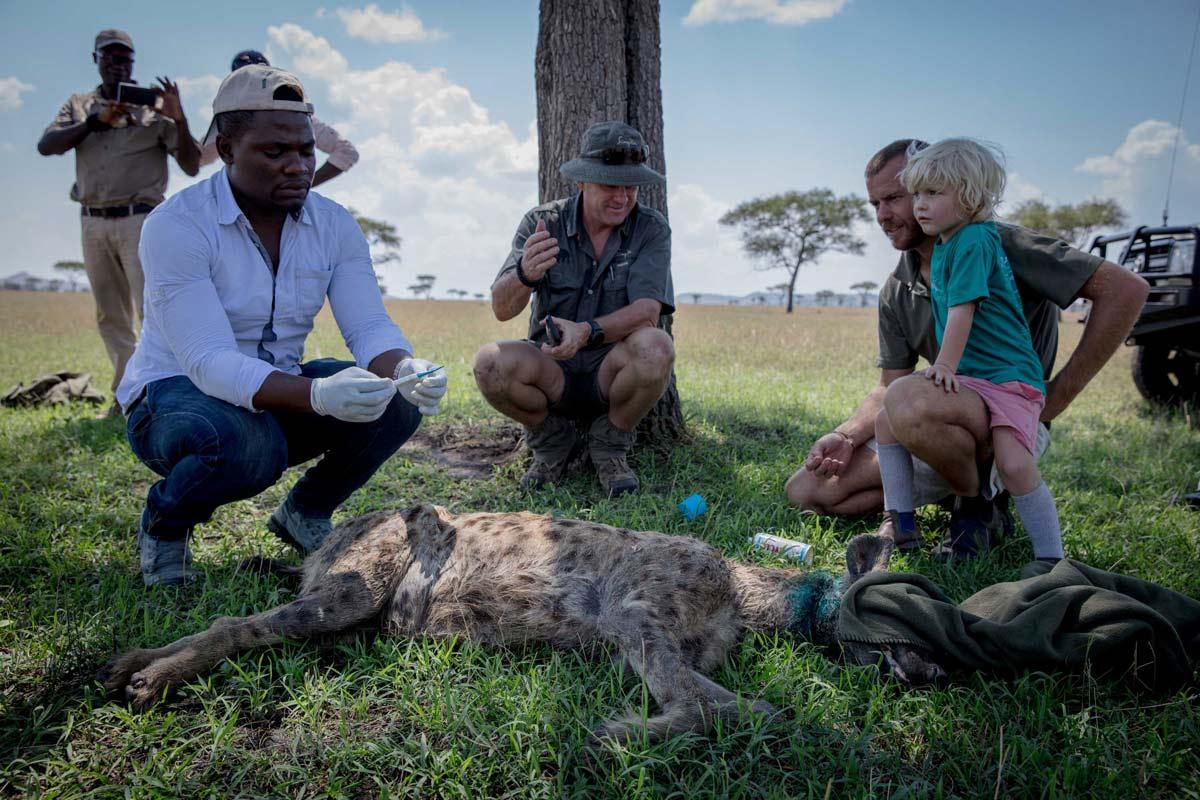 Grumeti Fund work to protect wildlife in the Serengeti .
