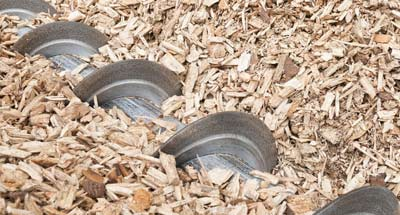 Commercial biomass woodchip