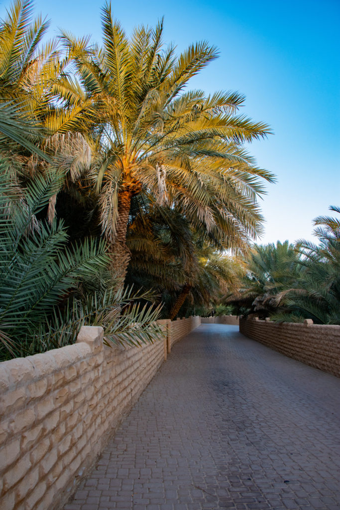 To The Mutaredh Oasis