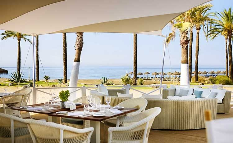 Gastronomy experience Christmas in Marbella