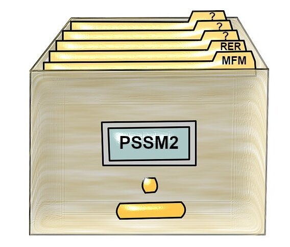 What Is PSSM2?