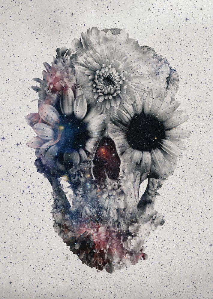 skull illustrations by Ali Gulec