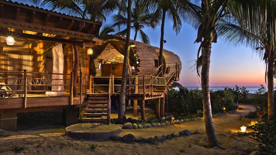 oceanfront tree-house