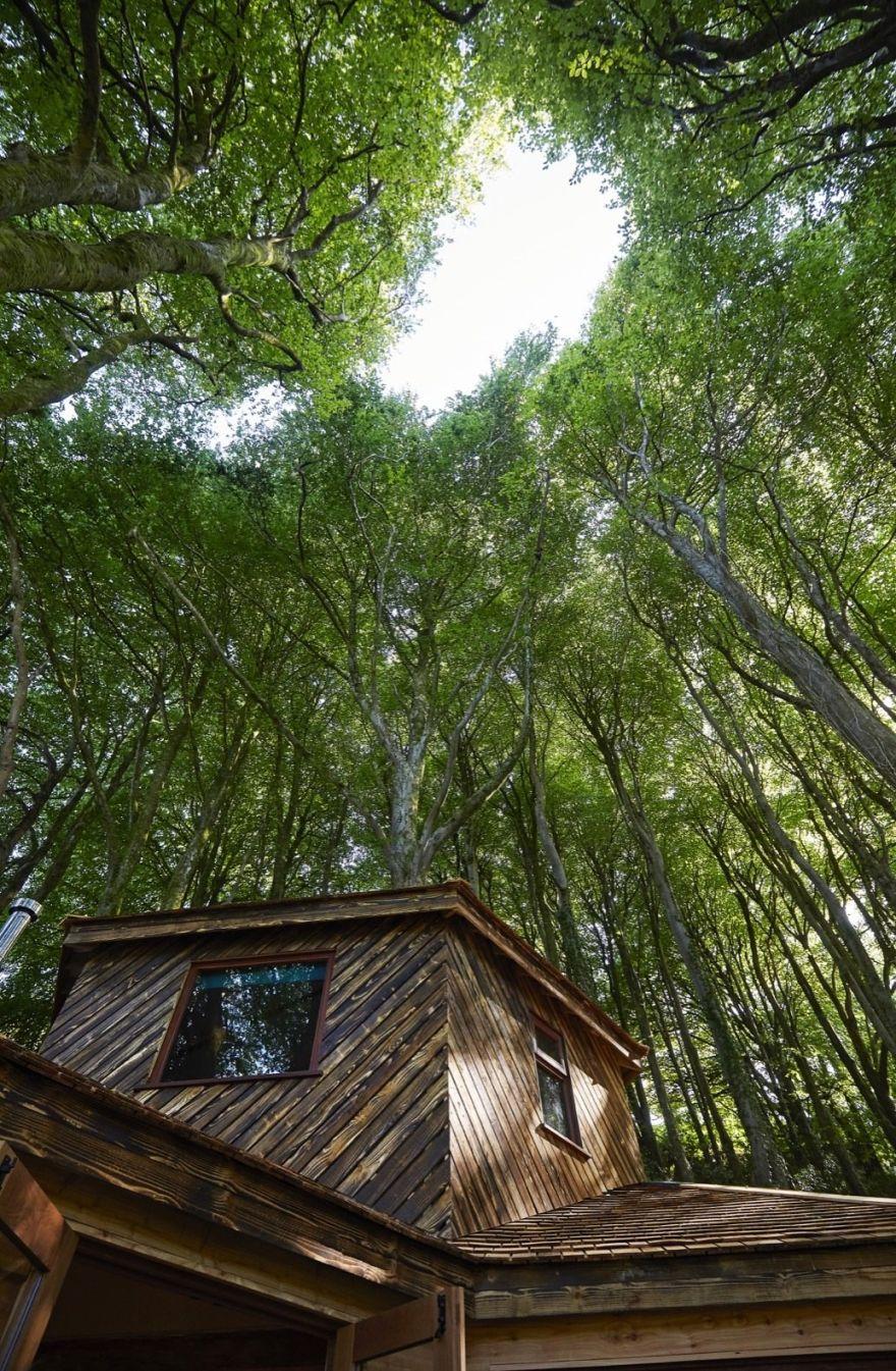 Ravendere Retreat Treehouse