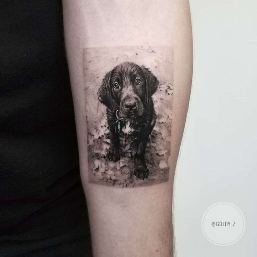 cute dog tattoo Zlata Kolomoyskaya