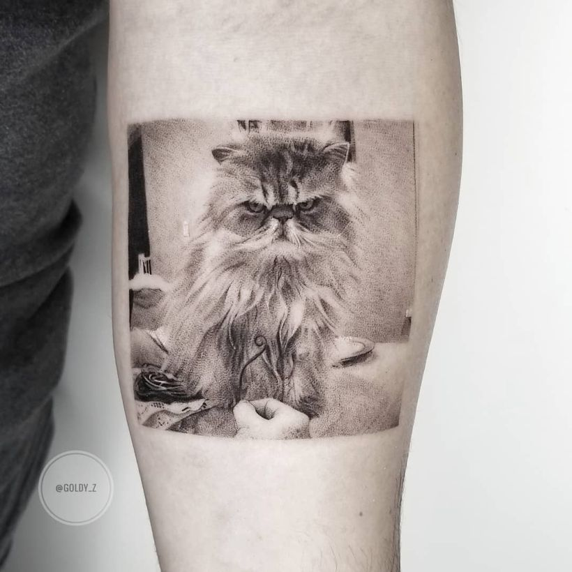 fine line realistic cat tattoo