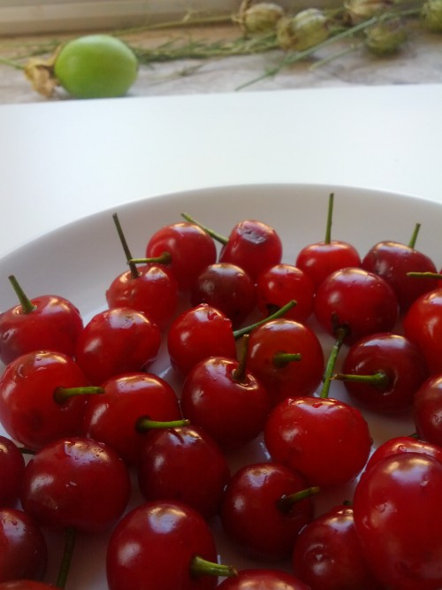Homemade Italian amarena cherry syrup