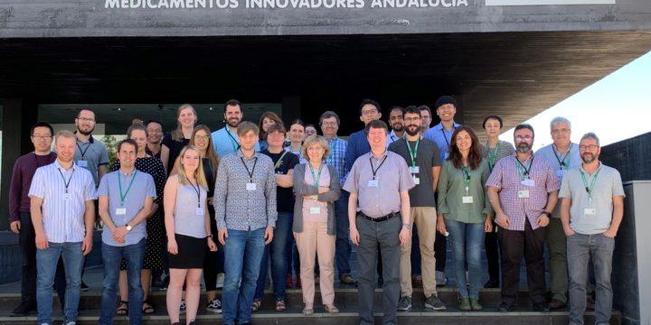 IIMENA Project Annual Meeting at MEDINA in Granada