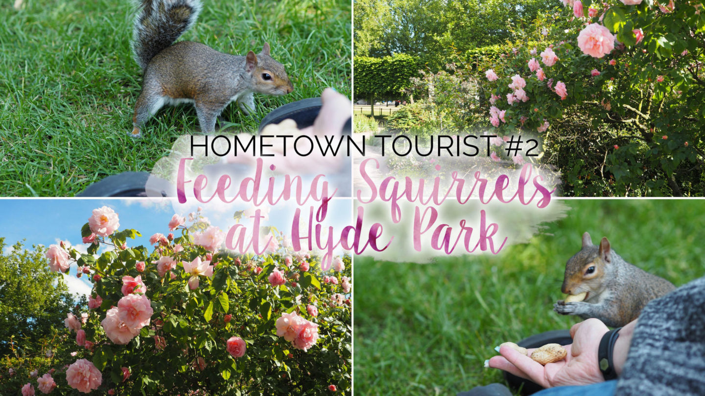 Hometown Tourist #2 – Feeding Squirrels at Hyde Park || Travel