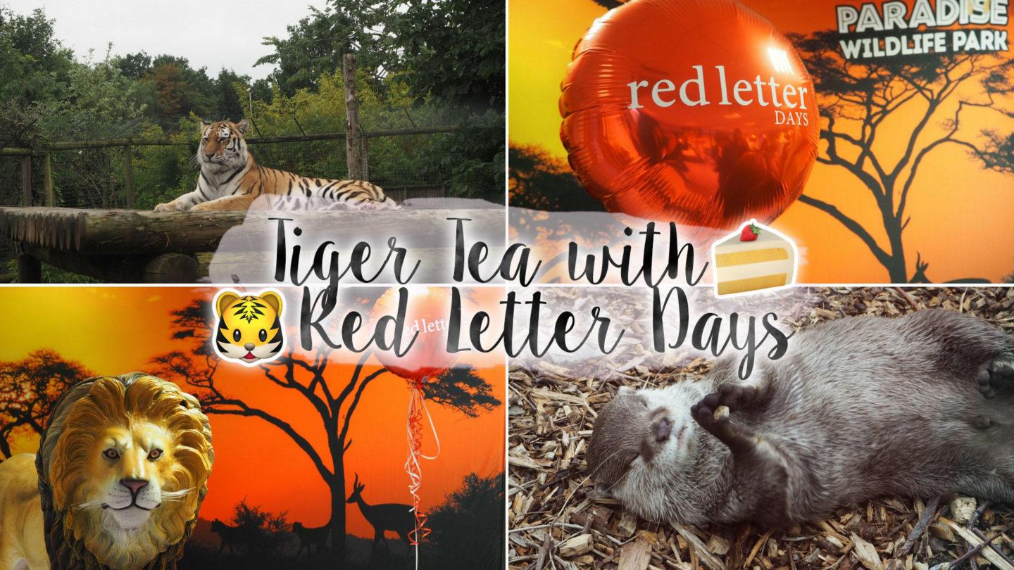 The Tiger Who Came To (Afternoon) Tea ft Red Letter Days || Lifestyle