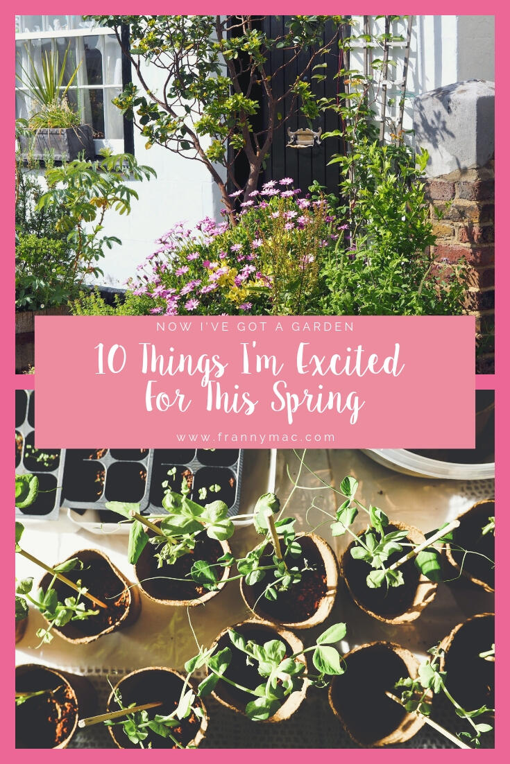 10 Things I'm Excited For This Spring (In The Garden) || Life Lately