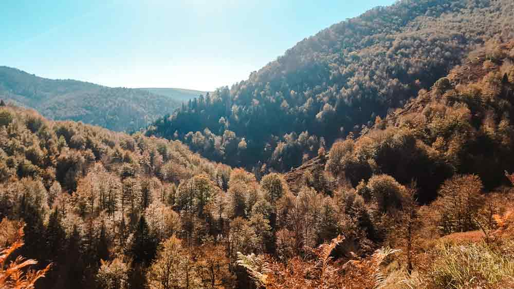 vistas-ruta-selva-irati